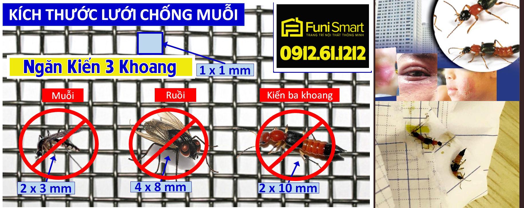 Làm khung lưới chống kiến ba khoang